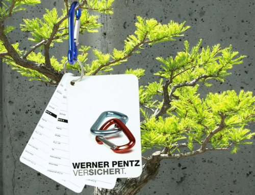 Werner Pentz – CommDesign Follows Profession